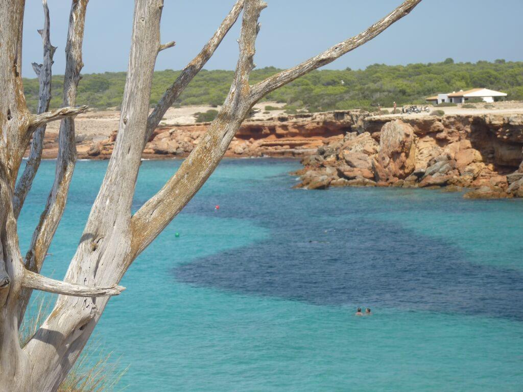 Spiagge spagna - Cala Saona
