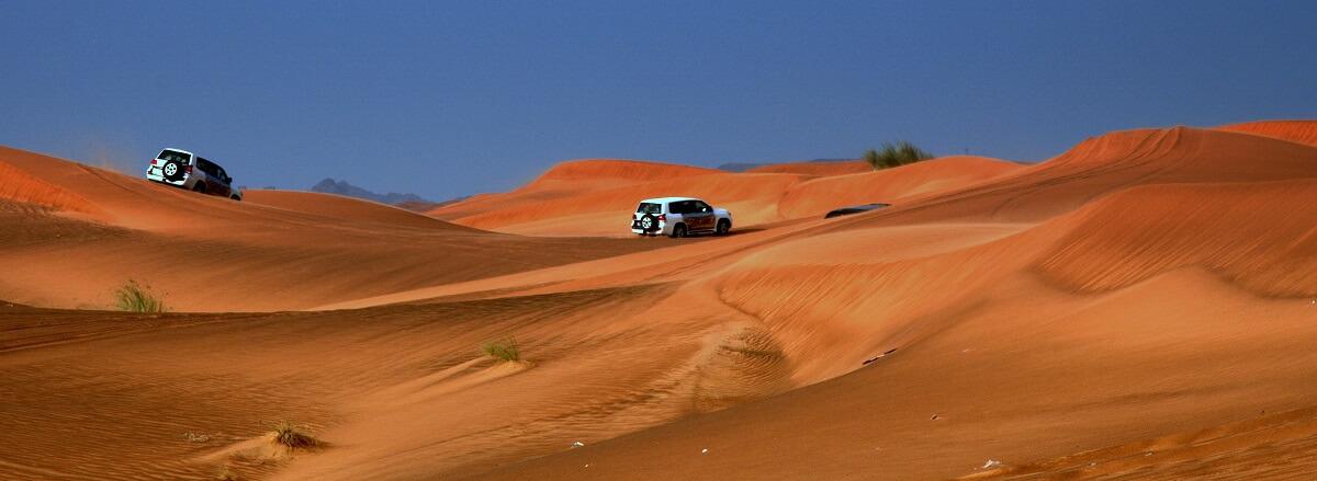 Cosa vedere a Dubai - Safari nel deserto