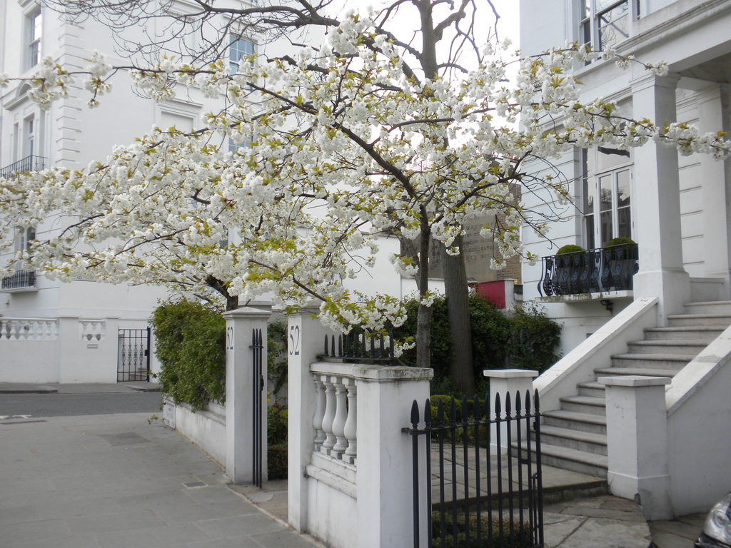 Il bianco di Notting Hill