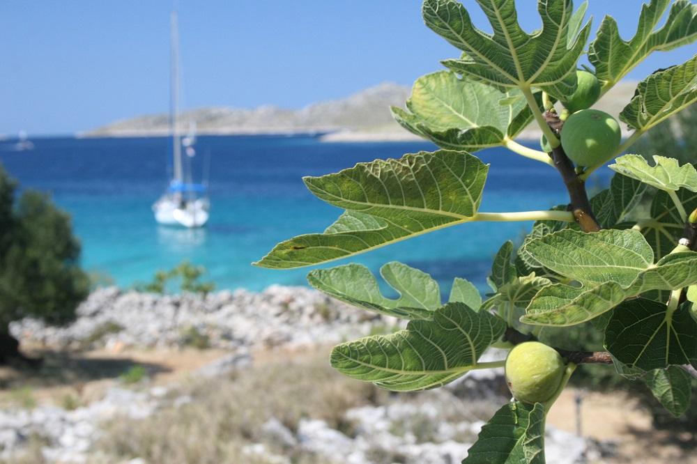 Trivago Malta Volo Piu Hotel
