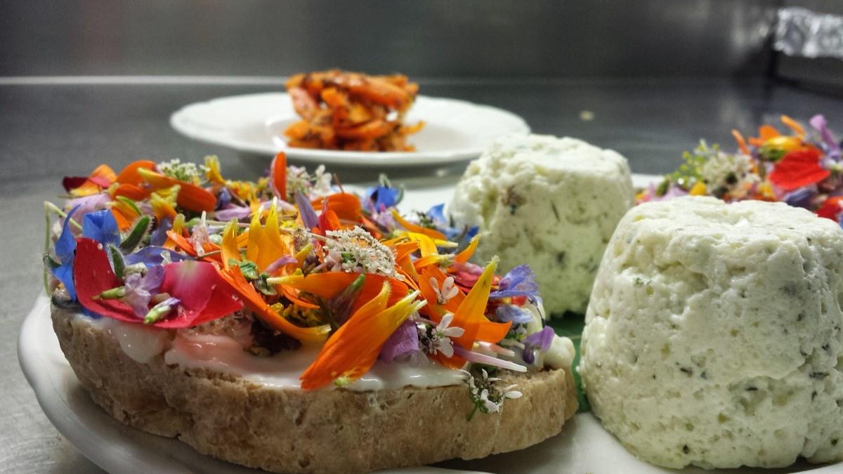 Uno dei piatti del ristorante dell'Agriturismo Casa delle Erbe