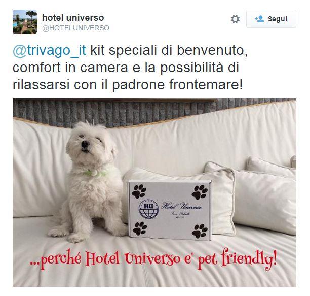 Il tweet dell'Hotel Universo