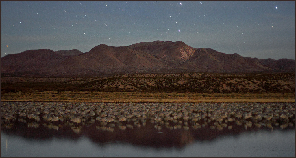 Bosque Del Apache Wildlife Reserve Stargazing