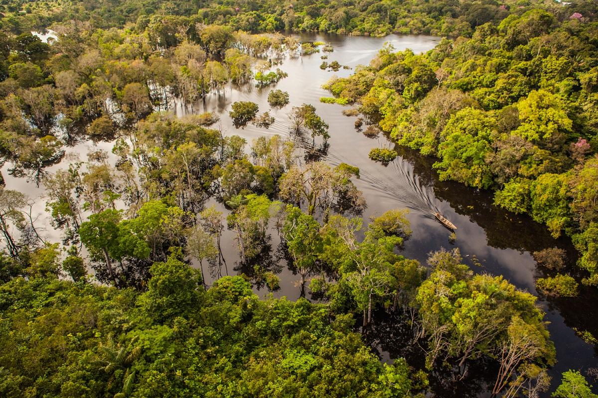 Brazils Best Natural Assets Room - Natural resources of brazil