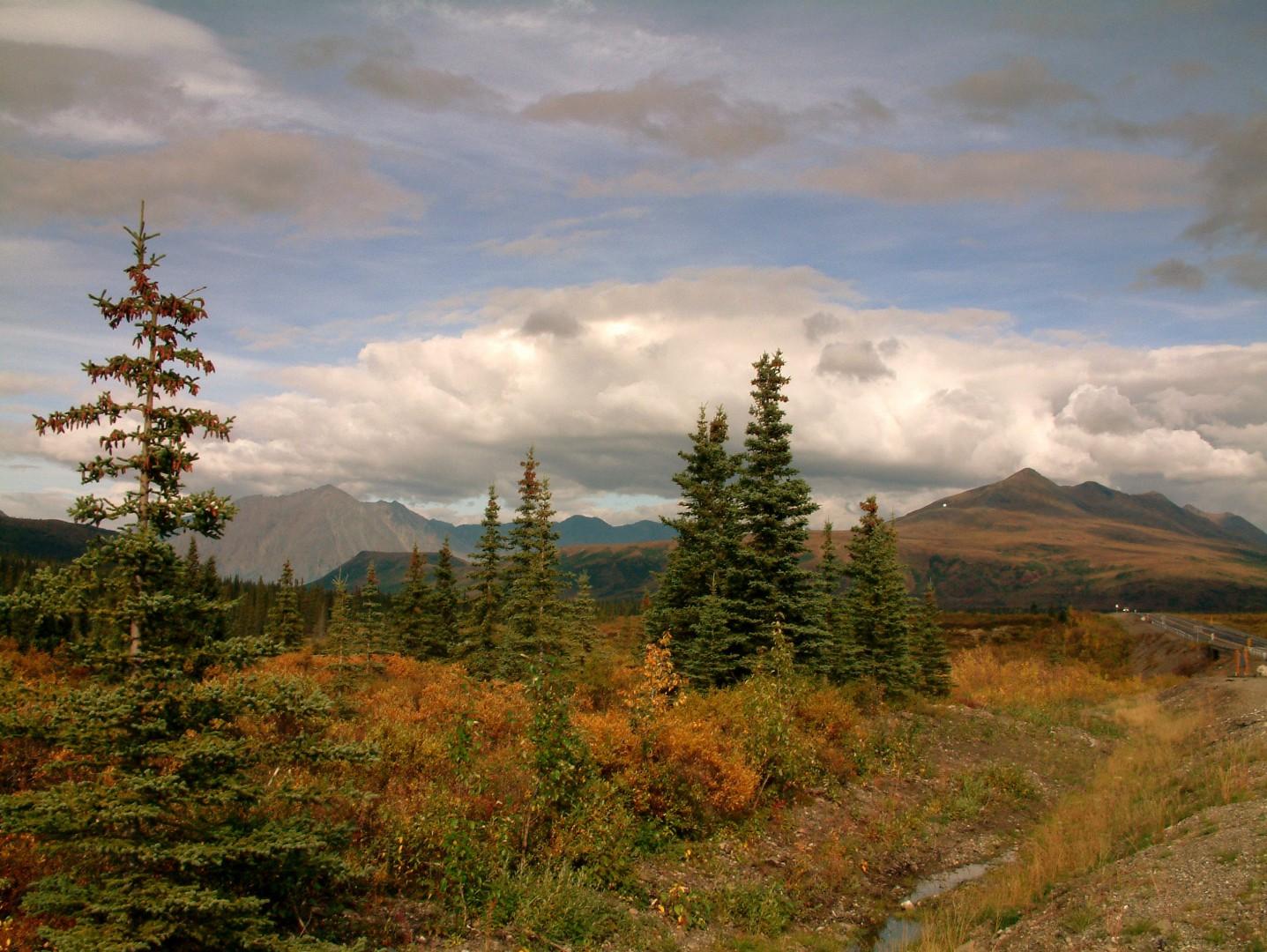 Bro hunting trip to Alaska
