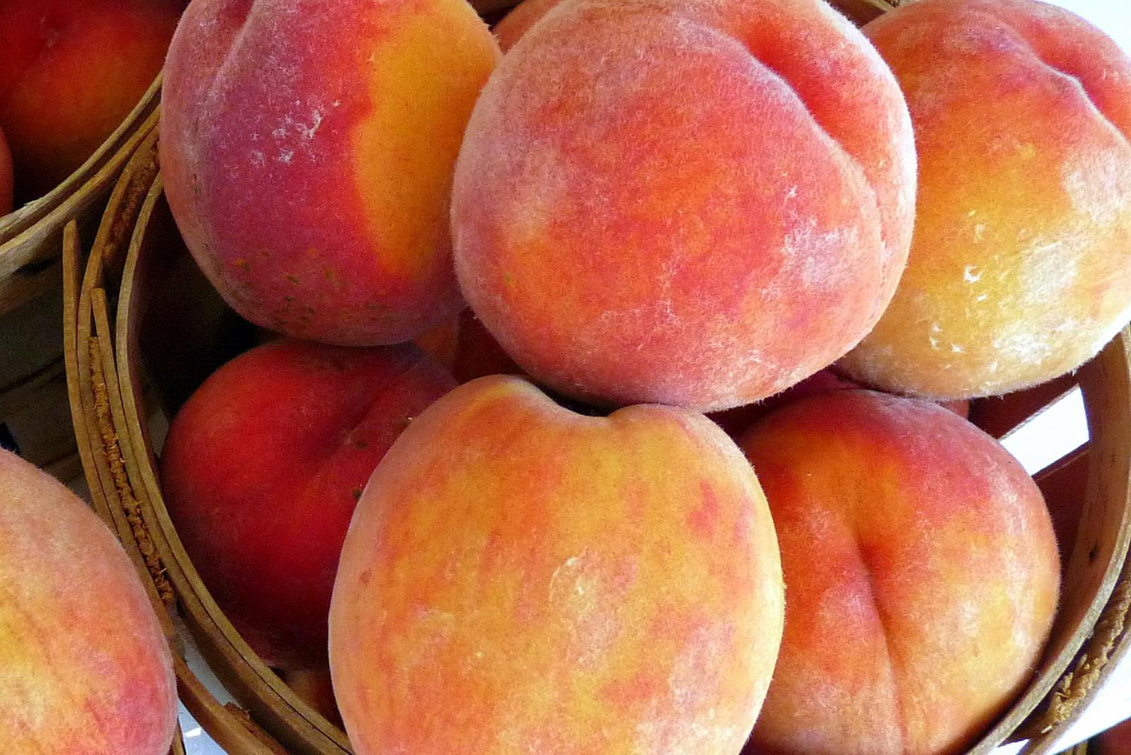 Cobden, IL peach festival