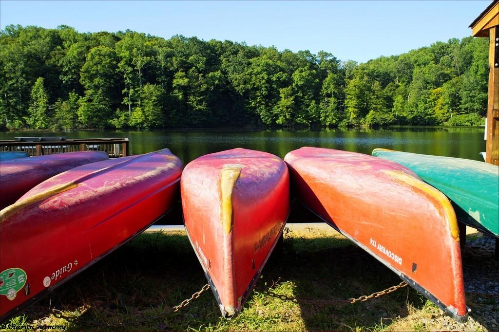 Motts Run Canoes