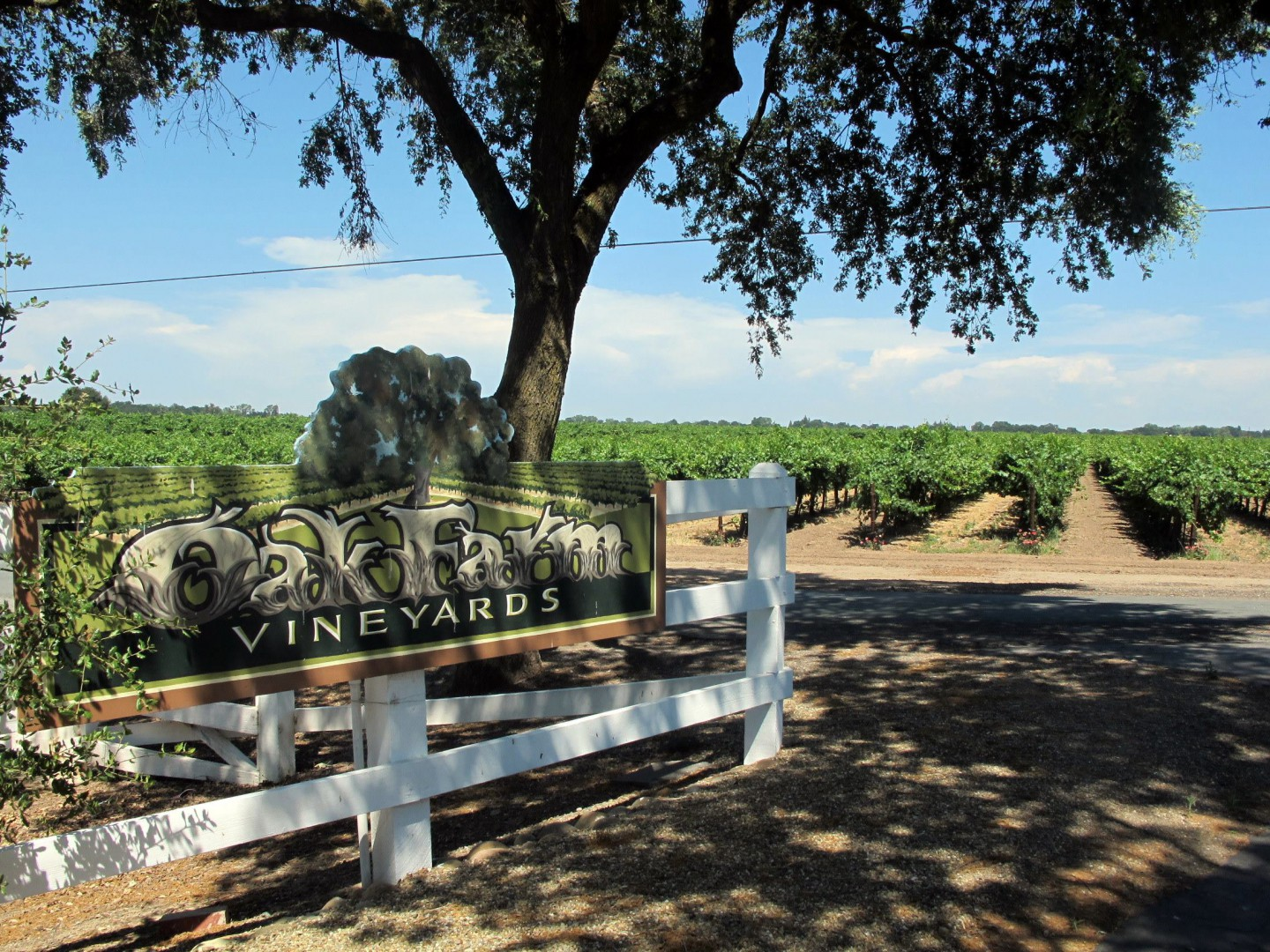Oak Farm Vineyards