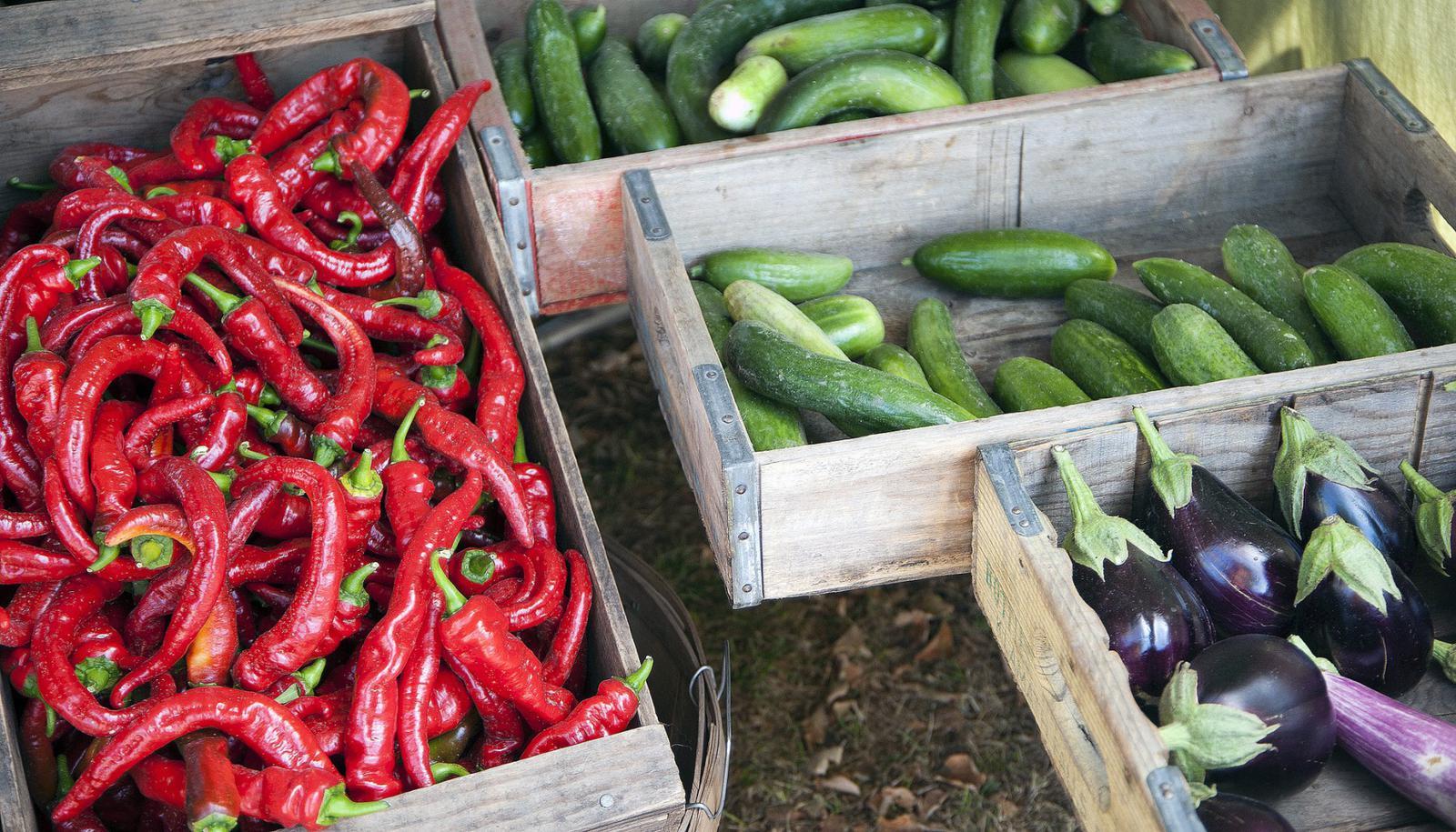 Farmer's Market SLC