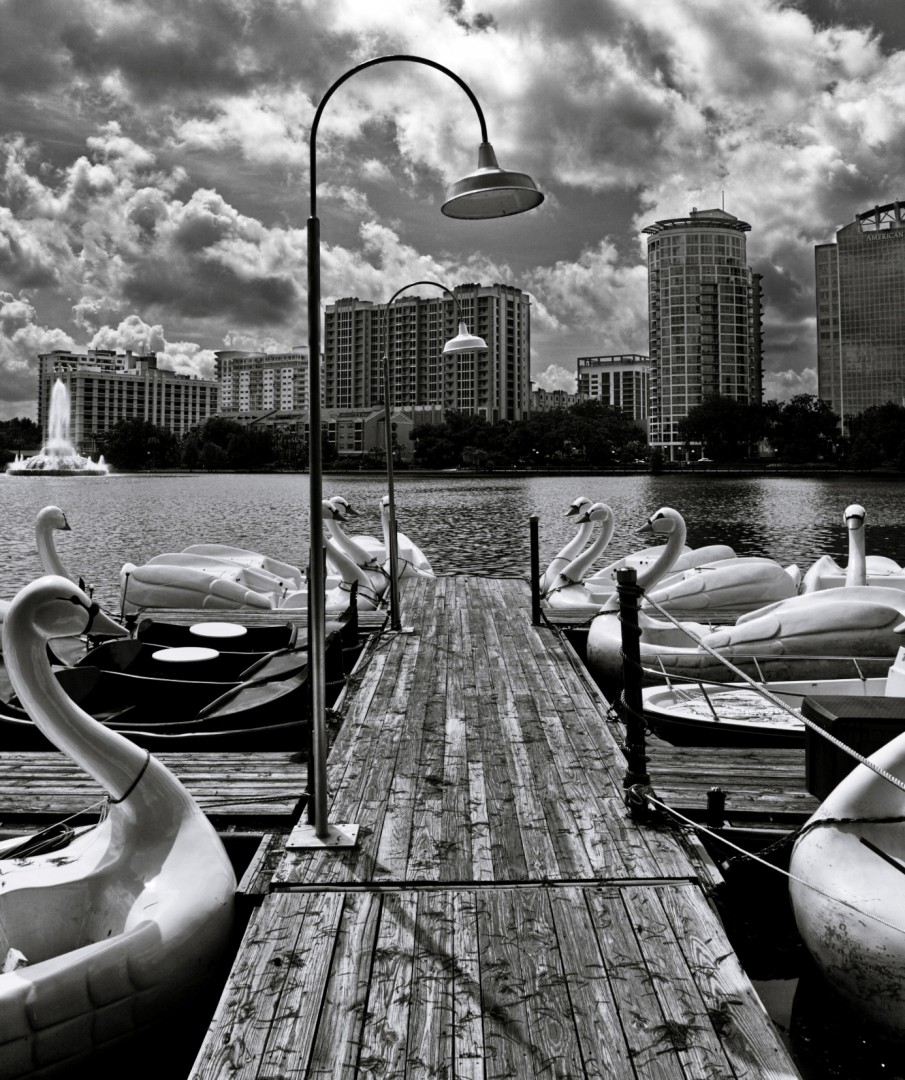 Swan Boats at Lake Eola Park