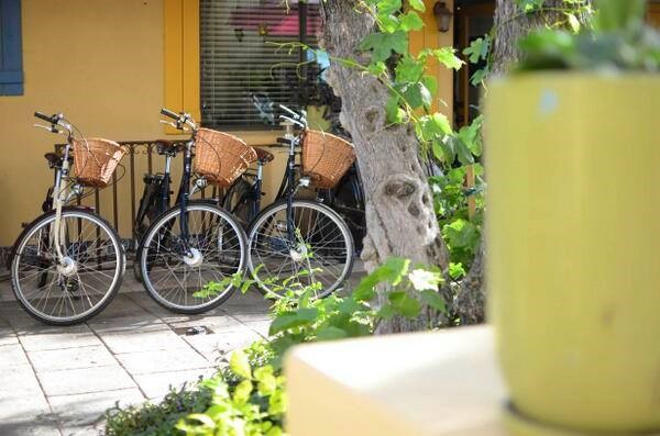 Phoenix Travel Guide Bike Rental