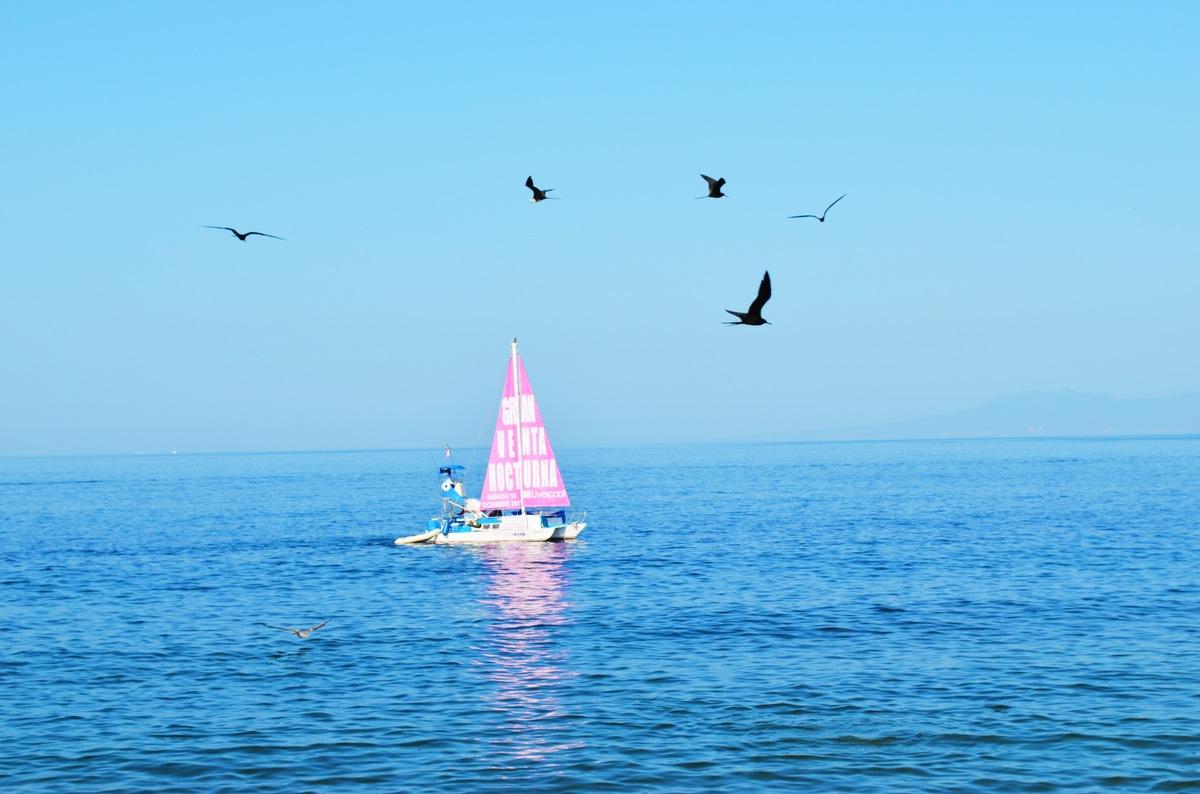 Sail away into the deep blue sea