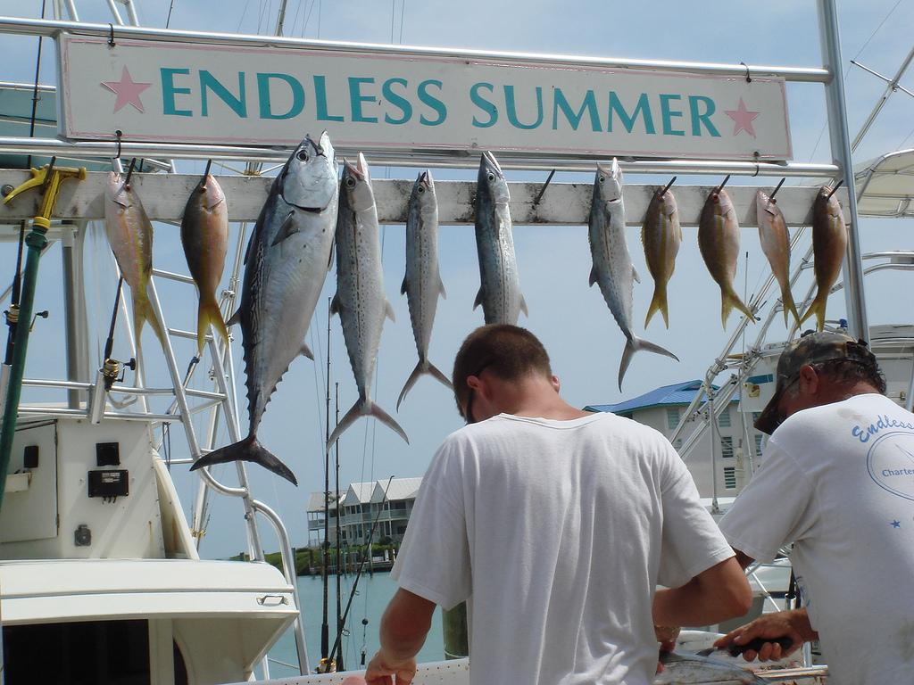Hawks Cay Resort Fishing