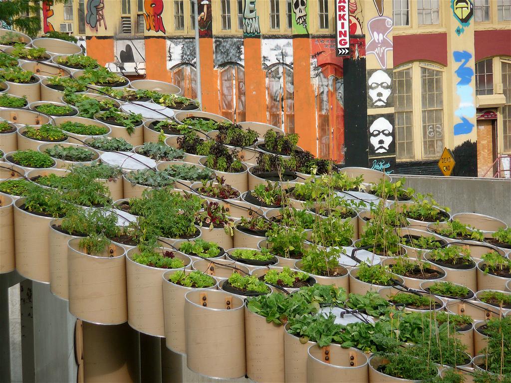 Urban Farm Ps1 brooklyn
