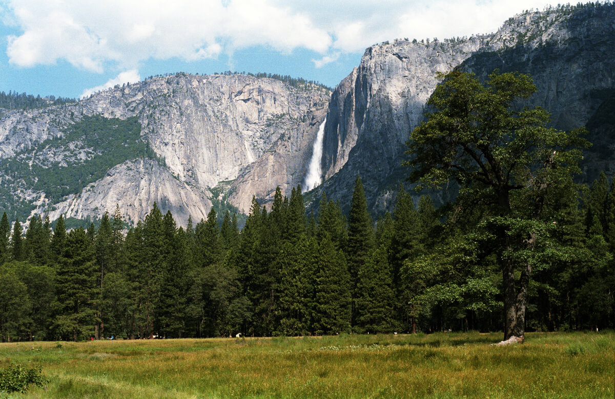 Yosemite National Park San Francisco Day Trips