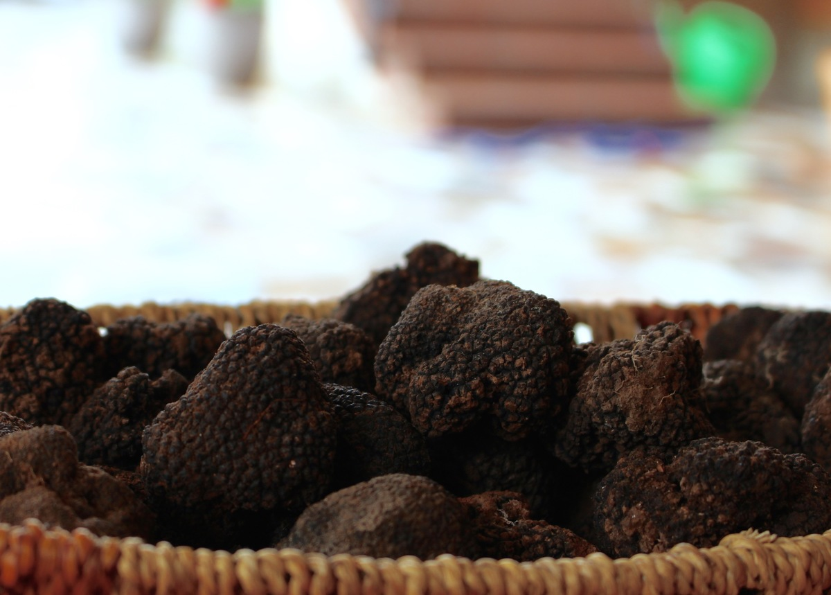 Summer Truffles at Karlic Tartufi
