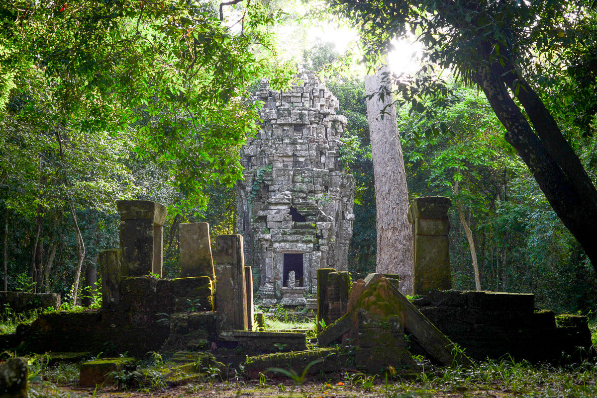 Cambodia Jungle Temple