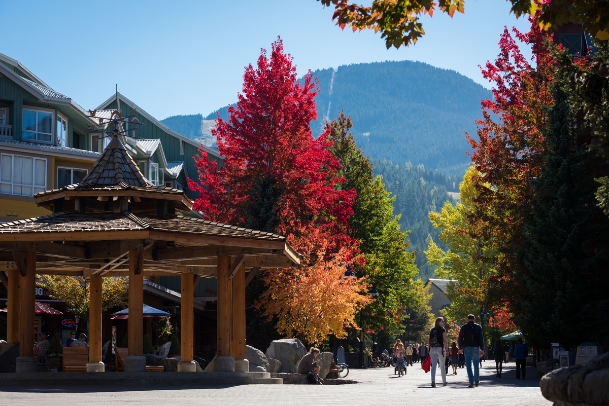 Fall colours in Whistler Village
