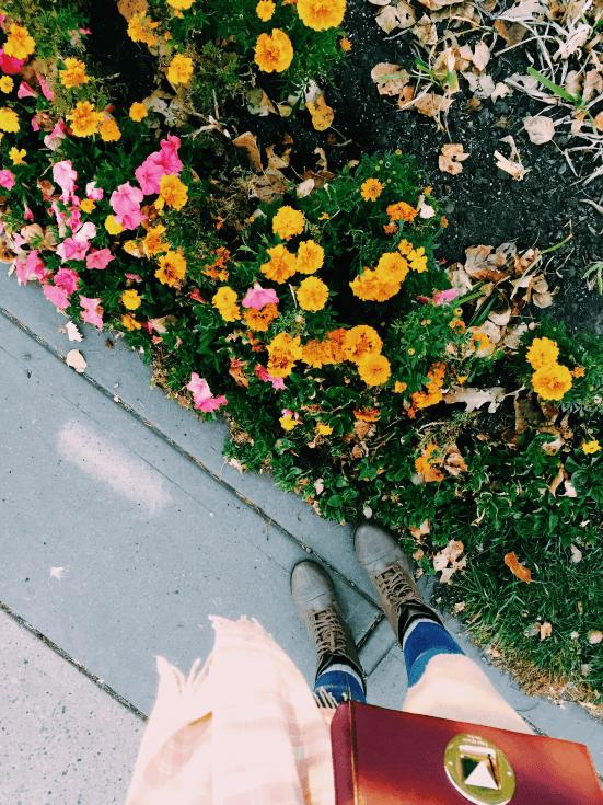 Walking in Calgary
