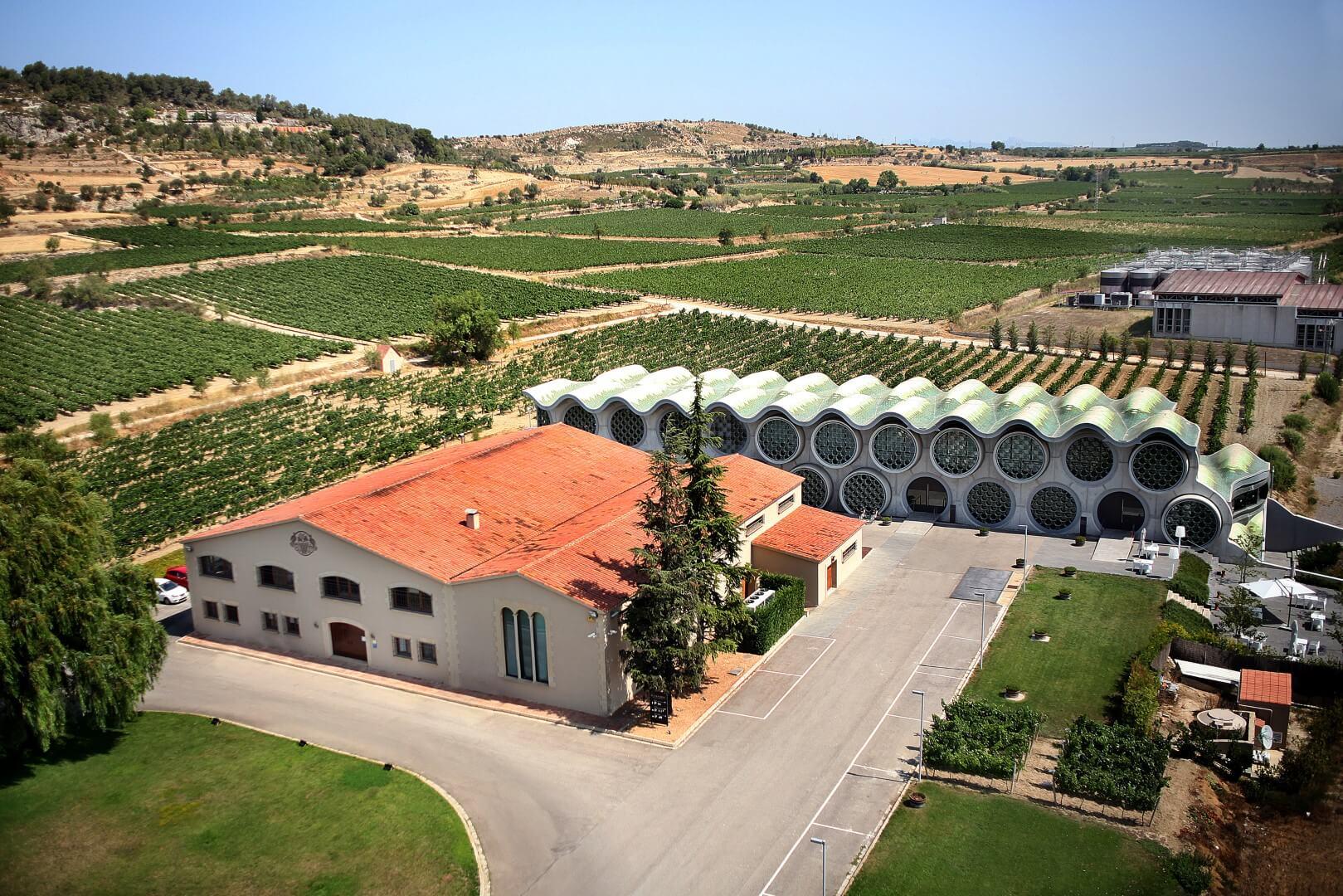 Olivia Hotels. Turismo enológico en España