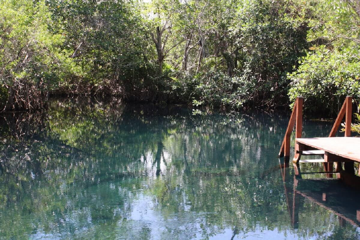 cenote hotel