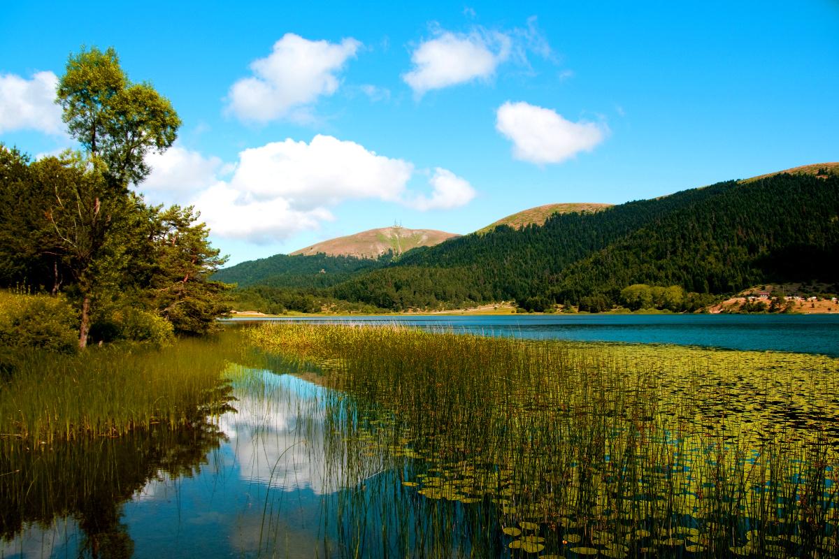 evlilik teklifi - abant gölü