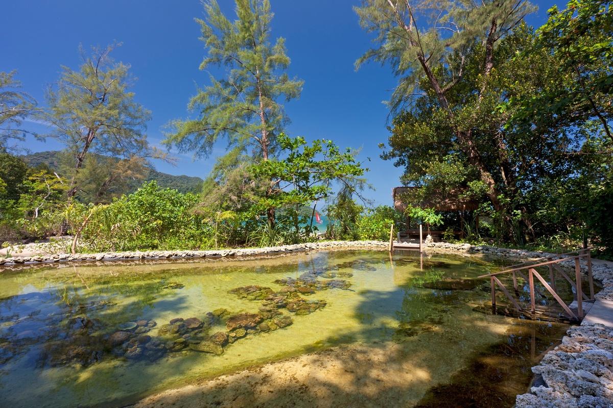 Andaman-hotelli
