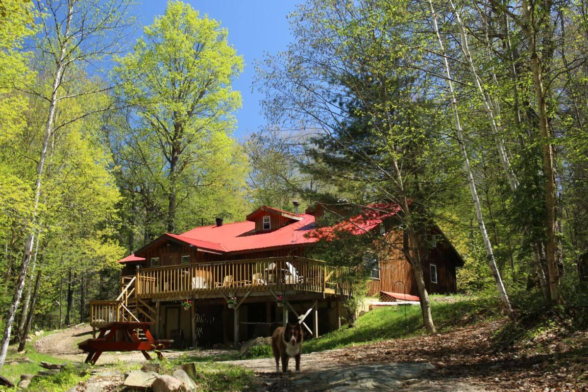 Algonquin Eco Lodge, Canada