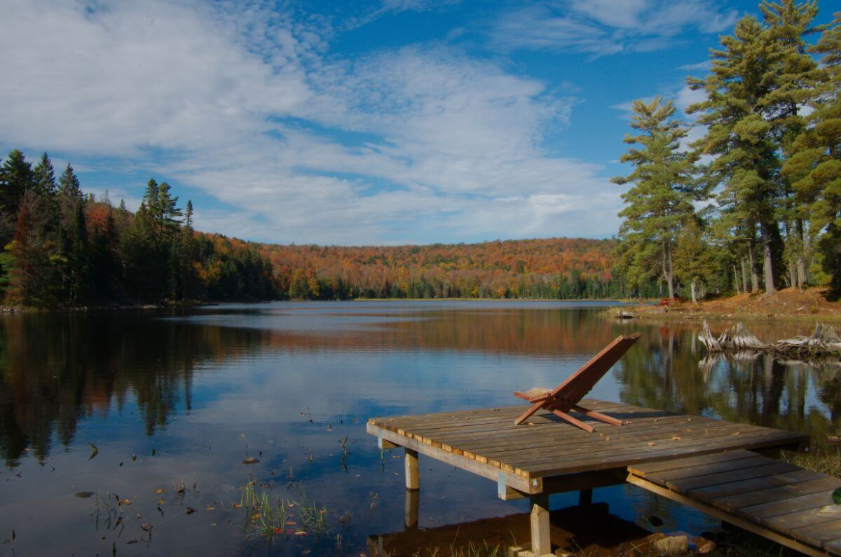 View from the Algonquin Eco Lodge