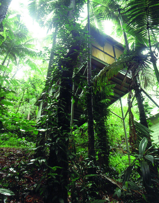 Cabin at the Daintree Eco Lodge and Spa, Australia
