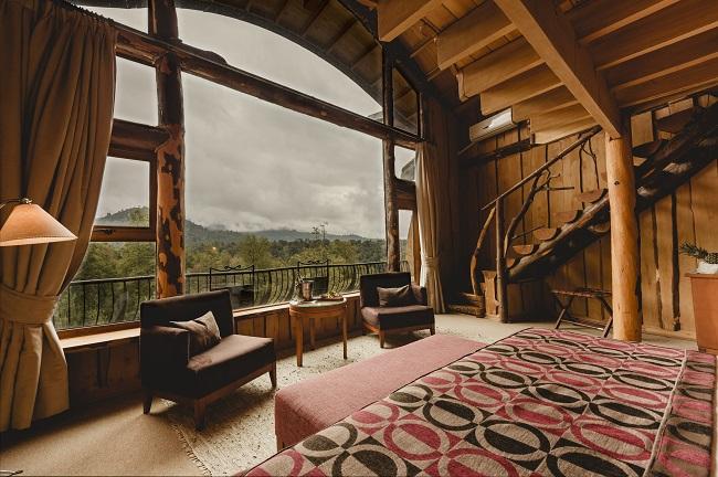 Suite supérieure du Nothofagus Hotel & Spa avec vue sur la canopée