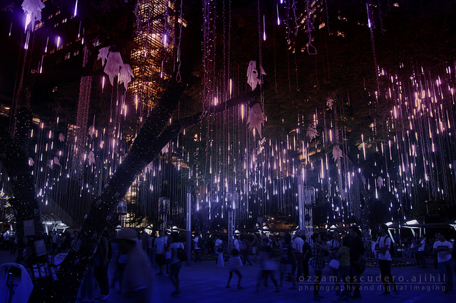 Décorations de Noel dans les arbres de l'Ayala triangle garden - Manila - Philippines