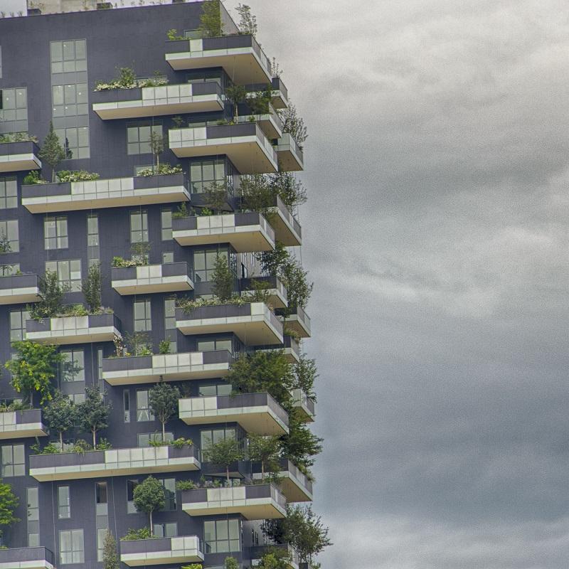 Vertical Wood - Milan