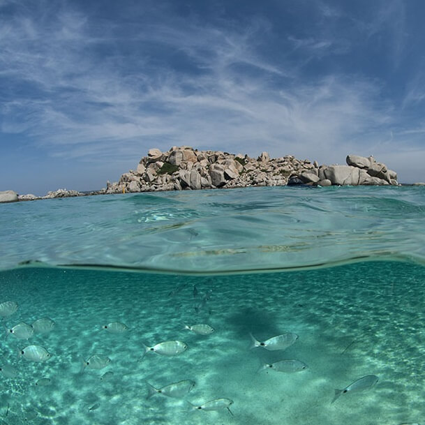 Plongée - Corse