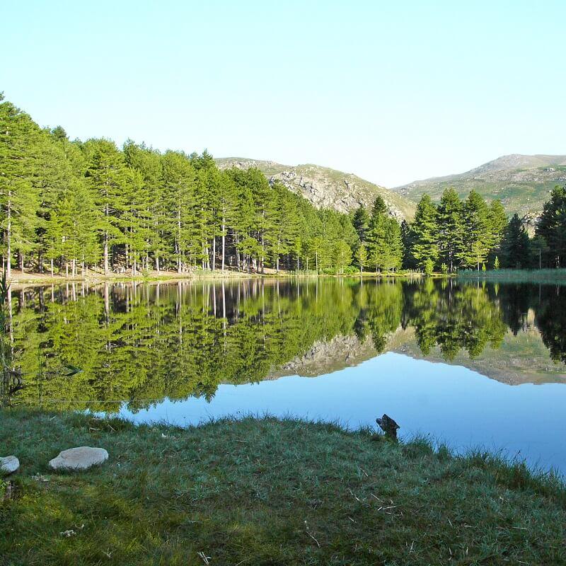 Lac de Creno - Commune de Soccia - Corse