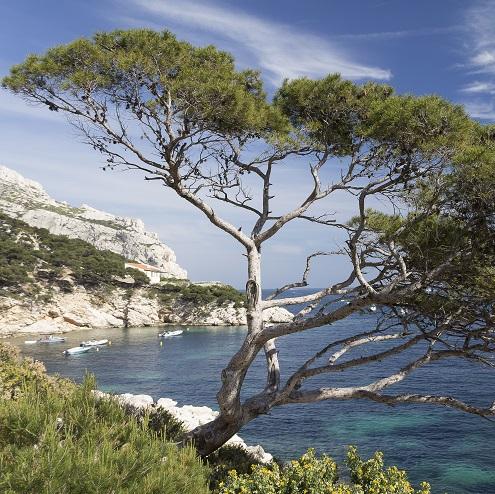 Vue sur la calanque de Sormiou à Marseille