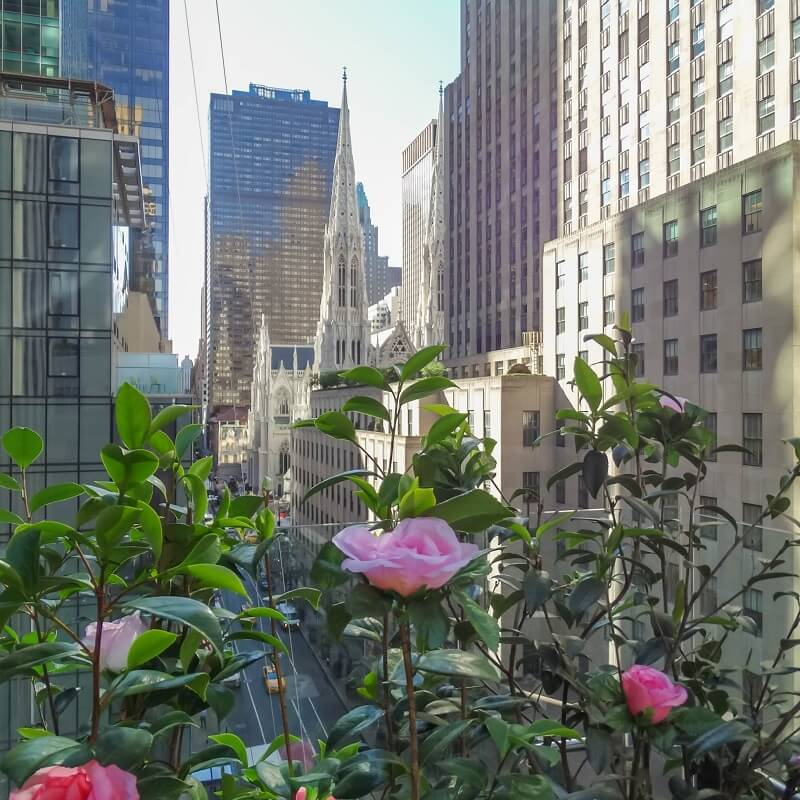 Terrasse - Hôtel The Terrace Club - New-York