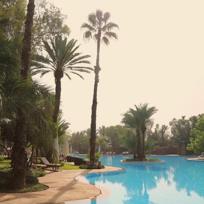 Piscine et jardin de l'hotel Es Saadi