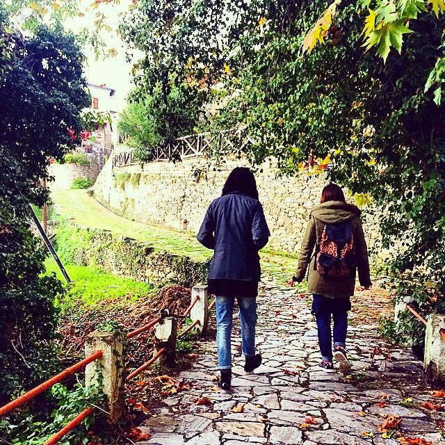 autumn stories - antigone_mts instaRoom5-sto-pilio-pelion-instagram-images-trivago
