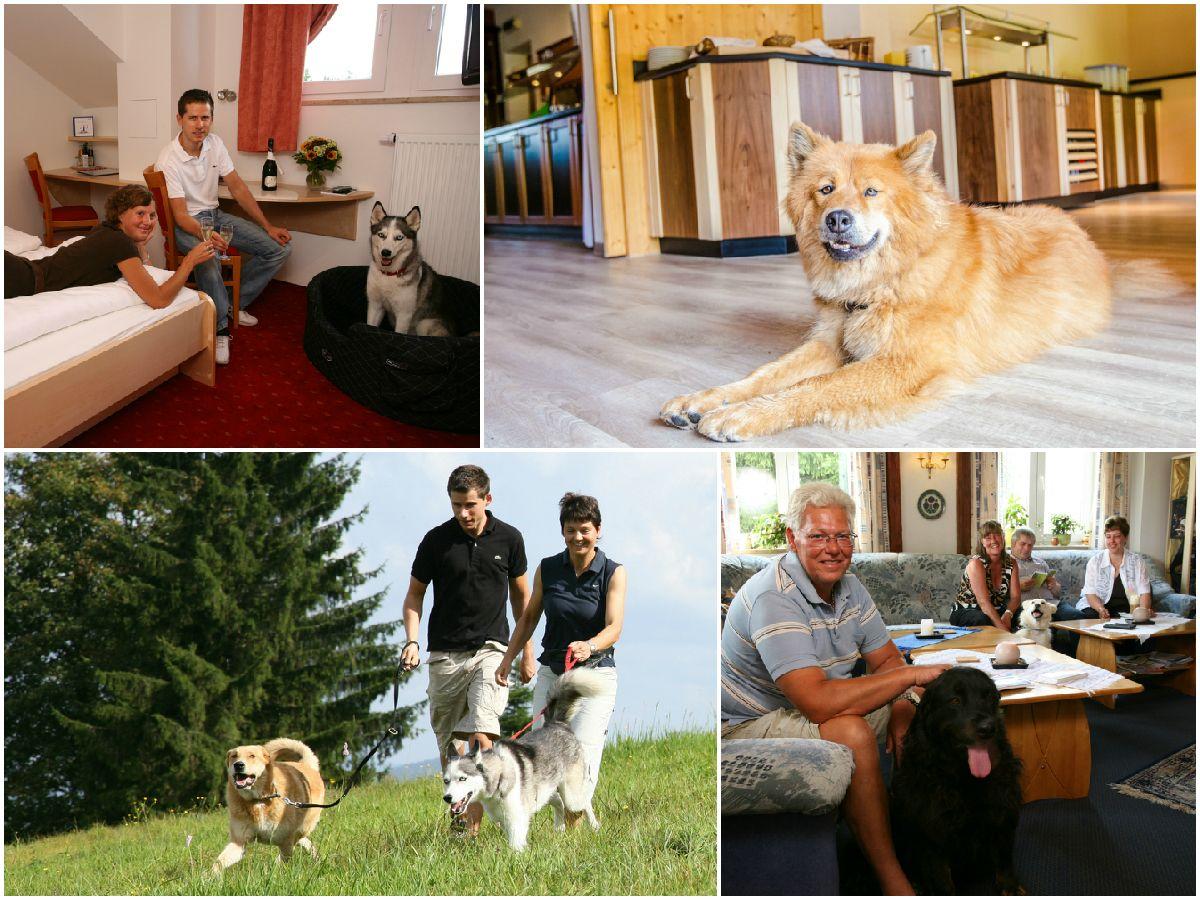 Hundehotels Deutschland