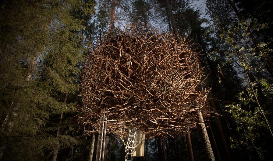 tree hotel harads