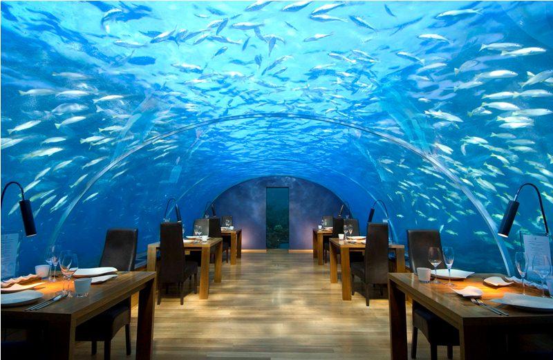 Conrad Maldives Rangali Island - Maldive - Ristorante sotto il mare