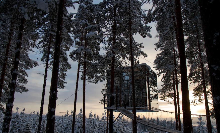 The mirror cube - Il cubo di specchio - al TreeHotel in Svezia