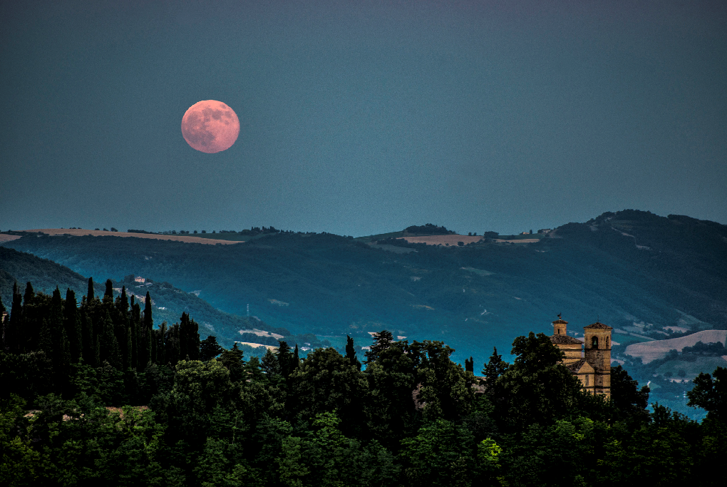 Mausoleo dei Duchi da Montefeltro. Foto Città di Urbino