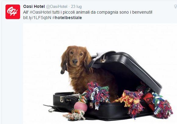 Il tweet dell'Oasi Hotel