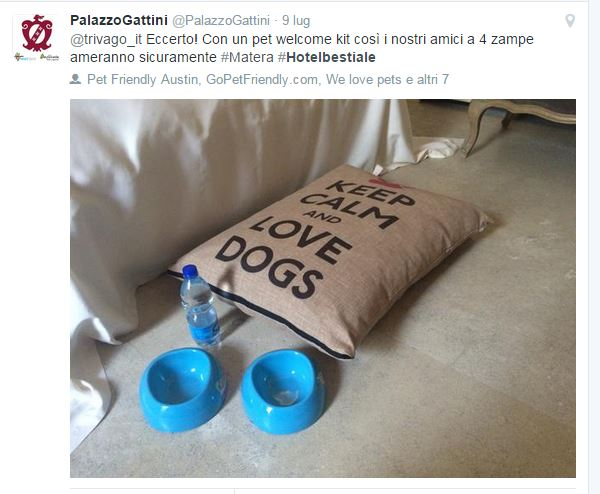 Il tweet di Palazzo Gattini