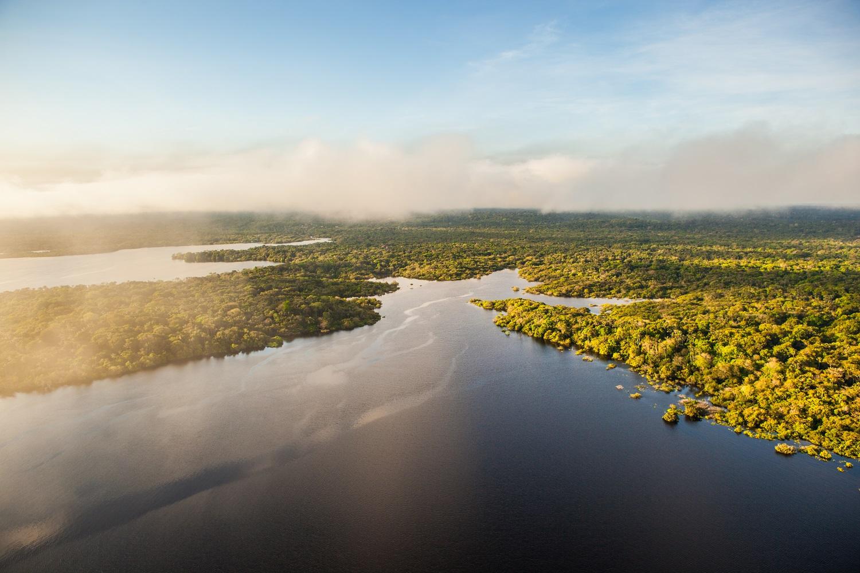 Amazon River and rainforest Brazil