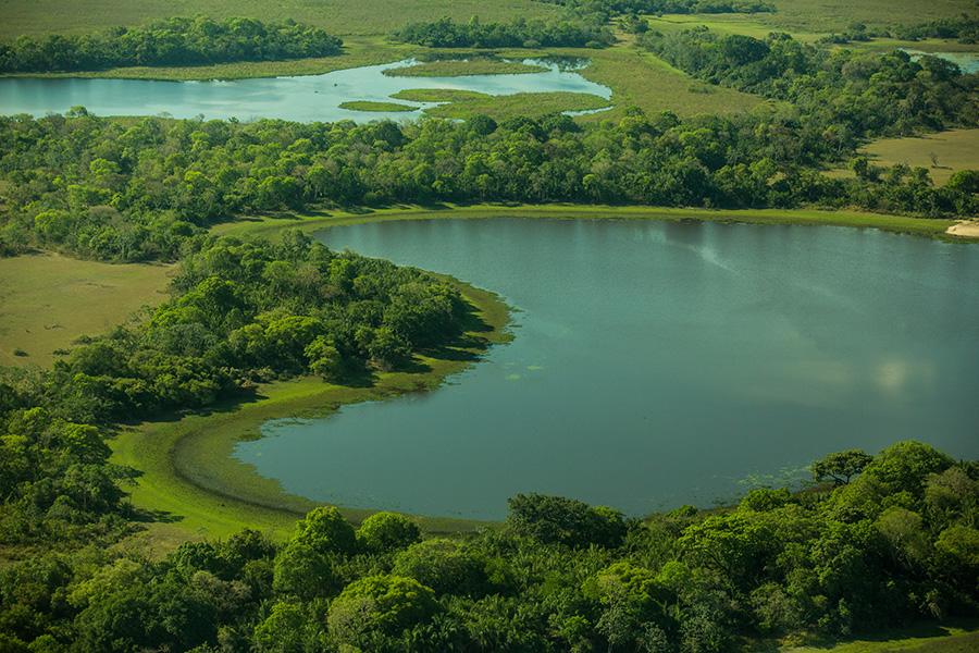 Mato Grosso do Sul Pantanal