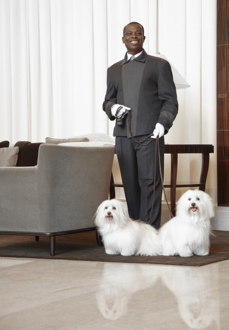 Dog friendly hotels Chicago