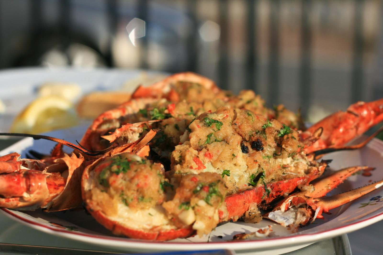 Tips for best Maine Lobster